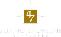 47 Anno Domini logo